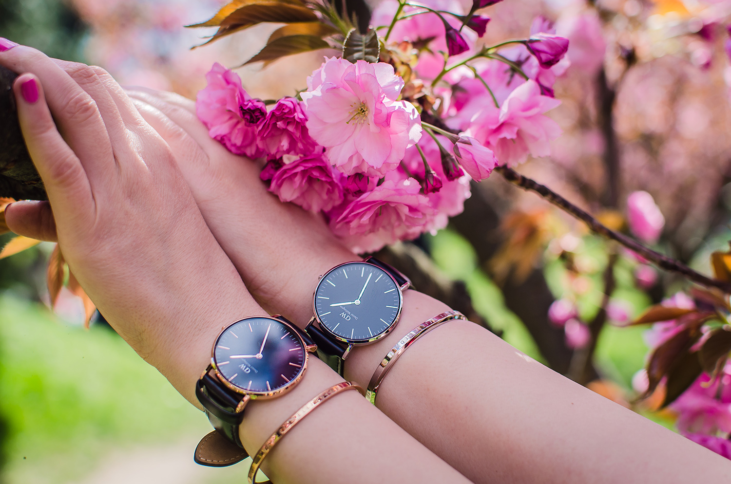 daniel wellington watches and cuffs